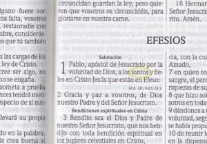 Santos y fieles (Efesios)